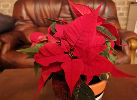 Ziemassvētki: ģimeniskums un kopā būšana caur improvizāciju