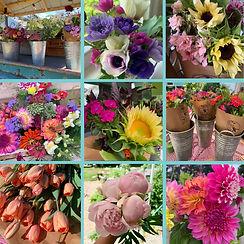 A Season of Flowers CSA.jpg