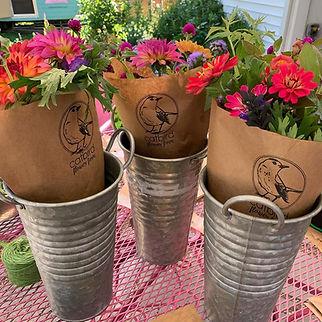 catbird bouquets1.jpg