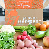 hungry Harvest.jpg