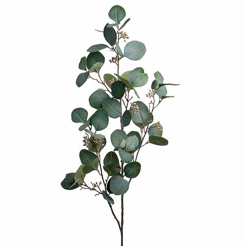 Eucalyptus med bær 100cm 1923-90