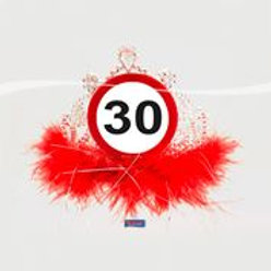 Tiara 30 Traffic Sign F 28830