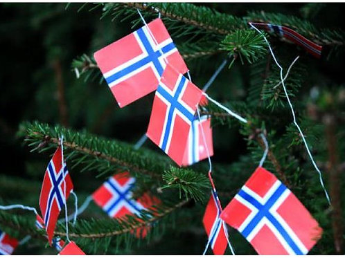 Flaggremse 2m 12 flagg Varenr: 99901