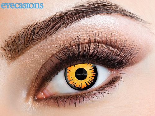 Eyecasions Eye Acces -1 Day- BELLA. ZEC-735 Wicked