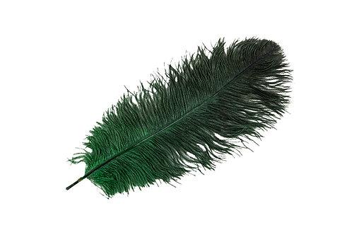 Strutsefjær Mørkegrønn 40-45cm
