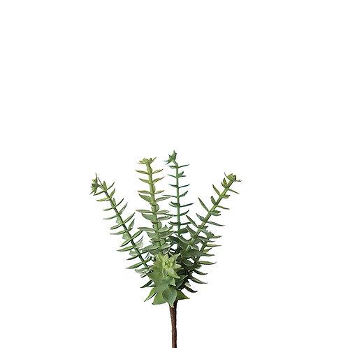 Succulent 18 cm Item no.: 9811-90