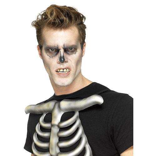 Skeleton Teeth SKU: 47012