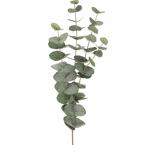 Eucalyptus 60cm 9953-95
