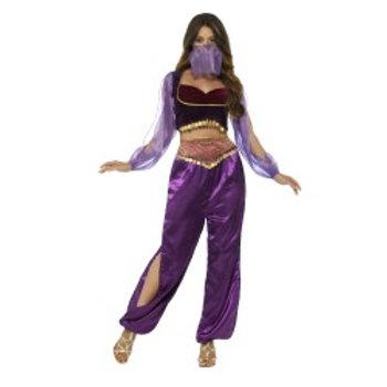 Arabian Princess Costume 24702 S