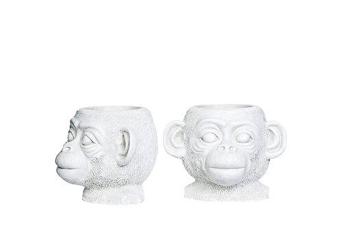 Blomsterpotte Ape Kid hvit 17x15x13cm