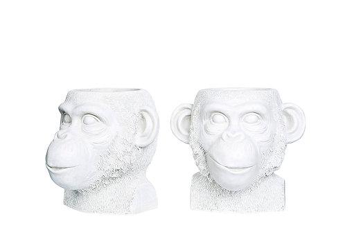 Blomsterpotte Ape Kala Hvit 22x22x20cm