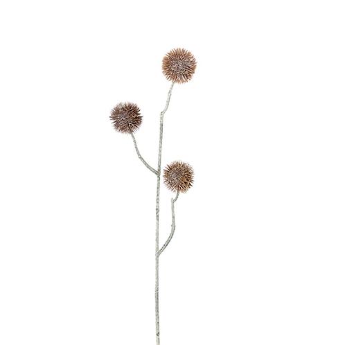 Eternell 50cm 2438-71