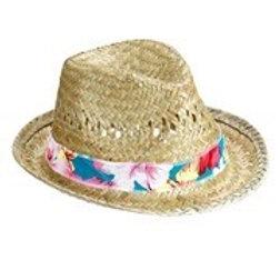 Beach Boys Straw Fedora. 14231 W