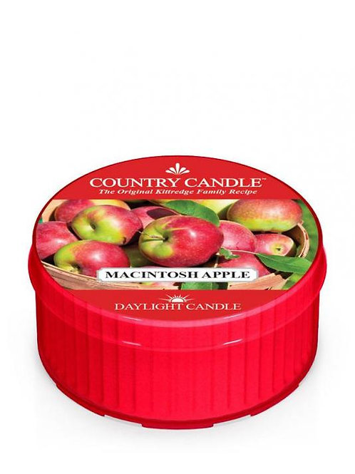 Country Candle - Apple - Daylight