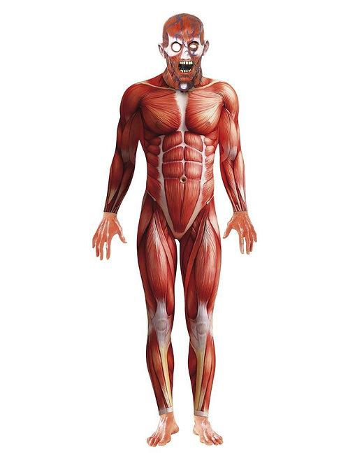 Anatomy Man Costume. 21580 Smiffys