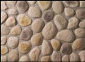 brown-rr-small.jpg