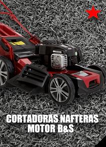 BOTON NAFTERA B&S-01.png