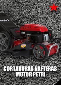 BOTONES NAFTERA MOTOR PETRI.png