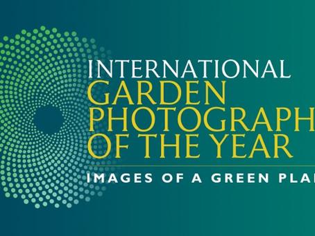 Category Winner - IGPOTY 2018