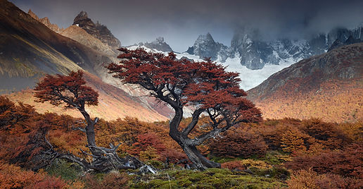 patagonia273.jpg