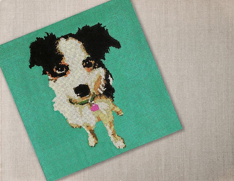 dog cover shot.jpg