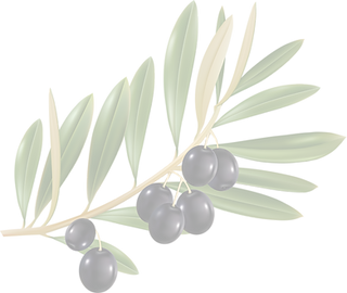 new-olive.png