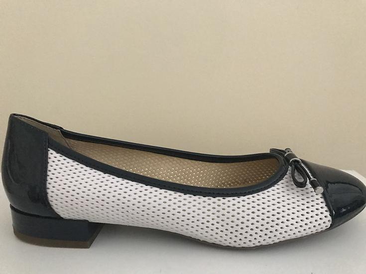 Geox Shoe
