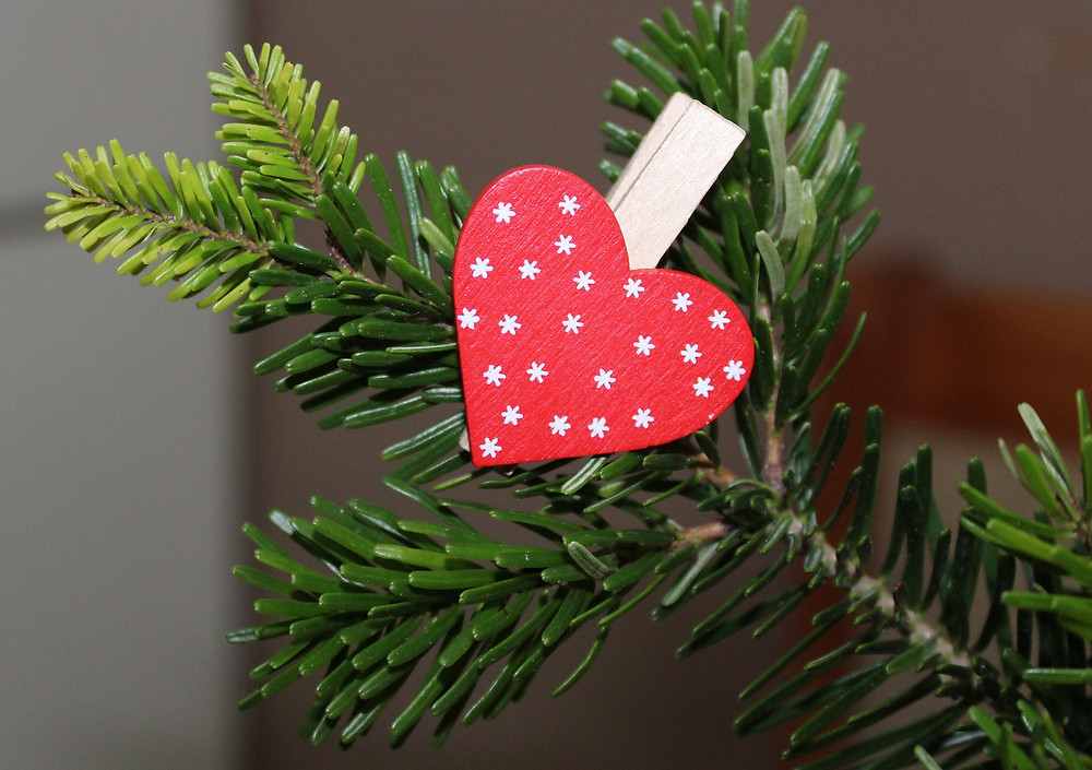evergreens red white heart