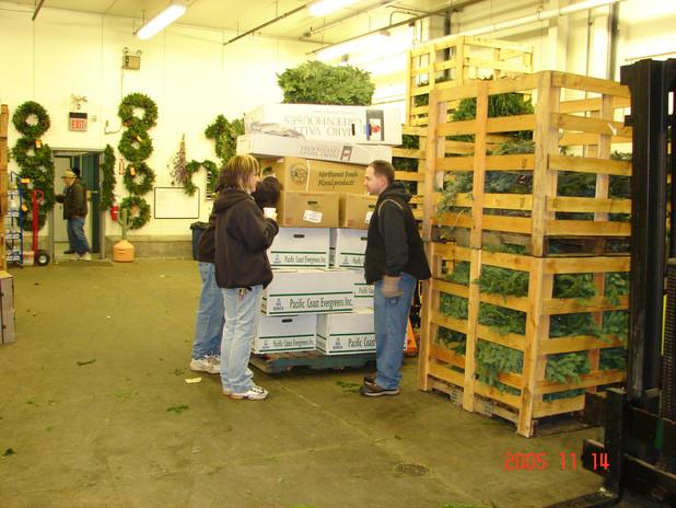 the 2005 wintergreens season 004.jpg