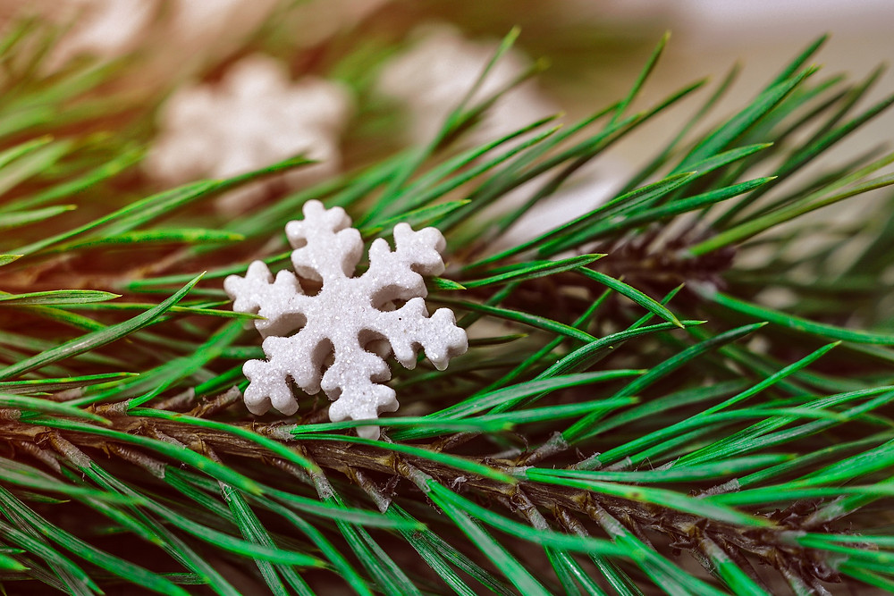 simple decoration evergreens snowflake