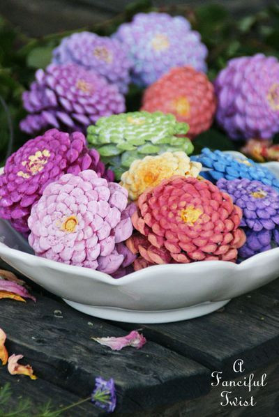 Pine Cone Zinnias Flowers Spring May