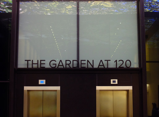 London roof garden at 120