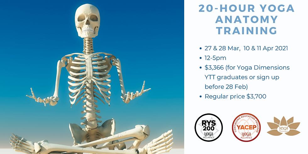 20-Hour Yoga Anatomy Training