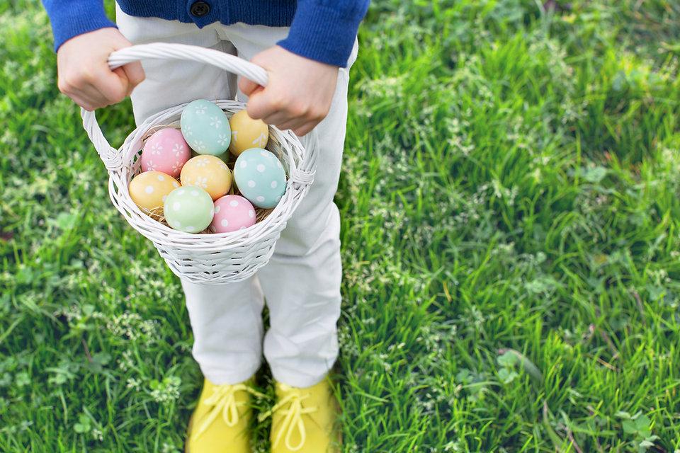 卵ハンター