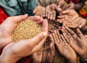 Where does India stand in the Global Hunger Index 2020? Know everything here.