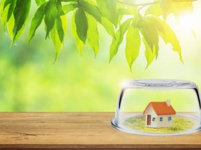 Mortgage 101: Insurance