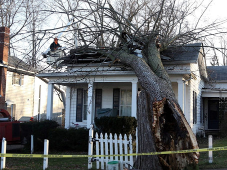 How to Spot Roof Damage from Storms or High Winds