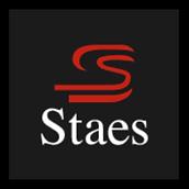 logo ronnystaes.png