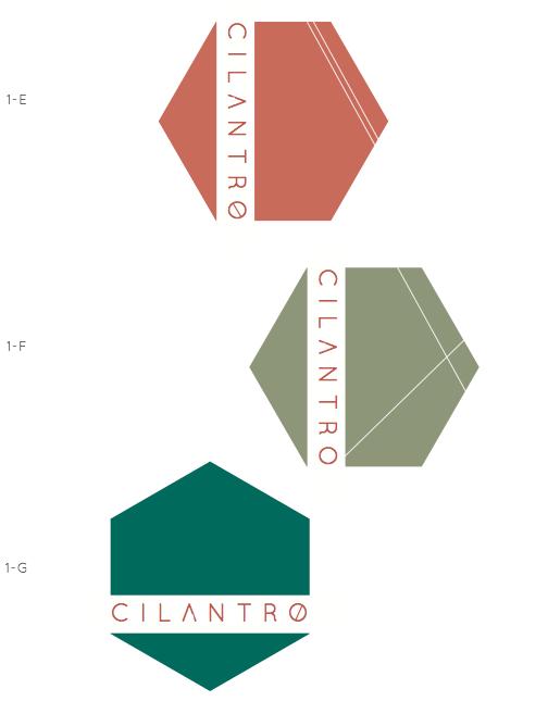 Option 1 | The Hexagon