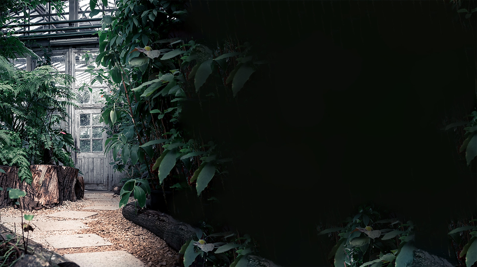 MissCreative Design Studio Down the Garden Path