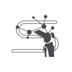 Synbotic Icon Logo