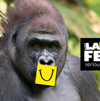 LF_GorillaFunny.jpg