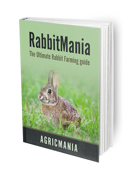 Rabbit Farming E-Book
