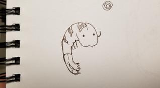 BiBimOmp Mascot Hand Drawn