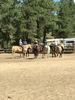 group in riding arena at stables