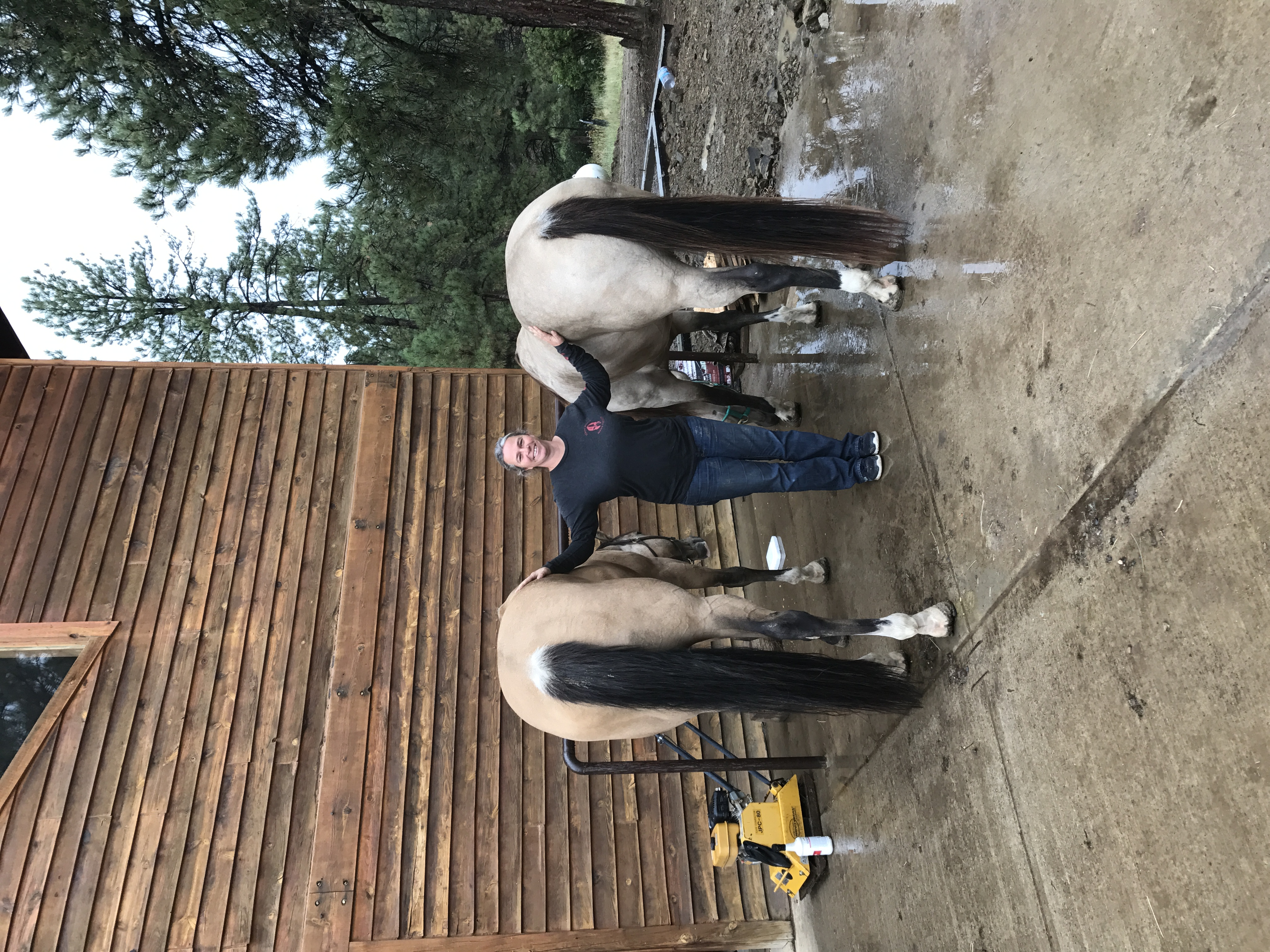Owner Kelly Gabbard with horses