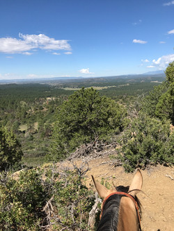view from trail ride near stables