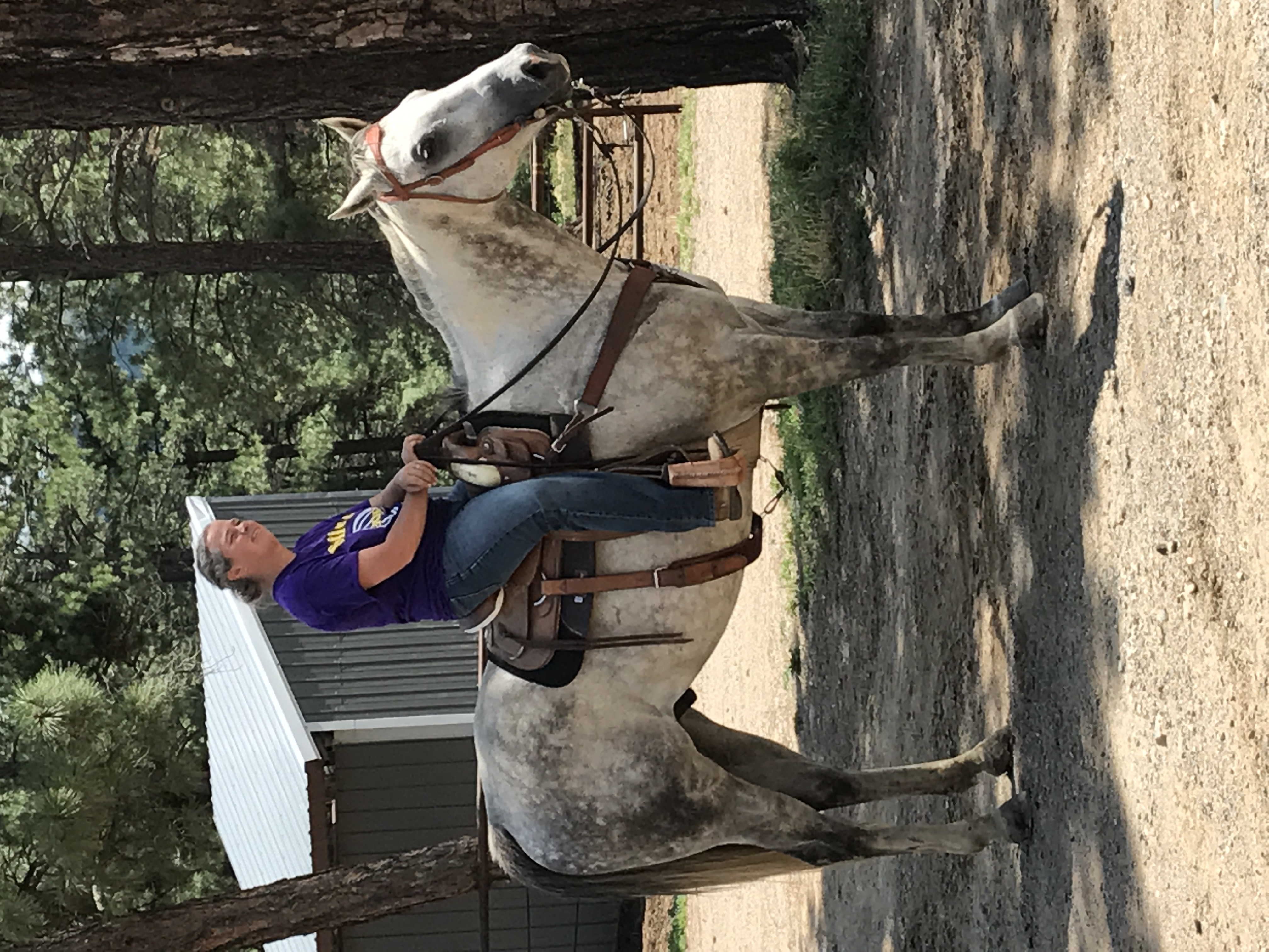 owner kelly gabbard on horse