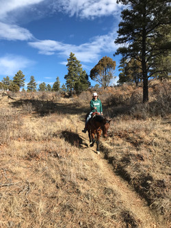 trail ride near sauls creek stables
