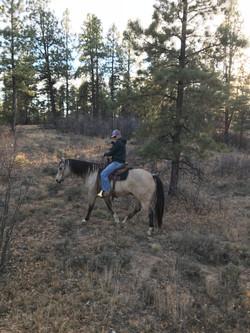 rider on trail ride at sauls creek